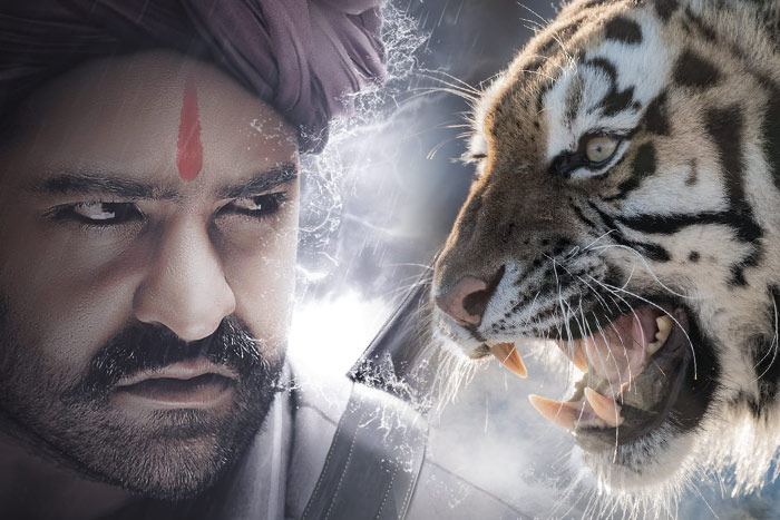 RRR NtR Fight with Real tiger