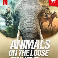 Animals on the Loose: A You vs Wild Movie Leaked, Download at Filmyzilla