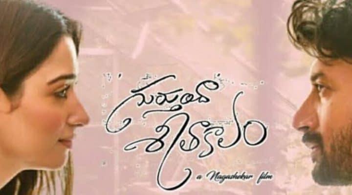 Gurtundha Seetakalam Movie